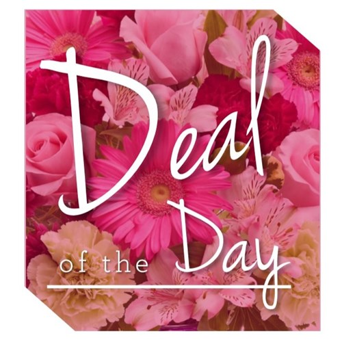 Deal_of_the_day_pic