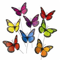 colorful-butterfly-accessory-for-flowers-green-plants-gifts