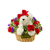 love-pup-dog-flower-arrangement-made-with-carnations-flowers-for-valentines-day