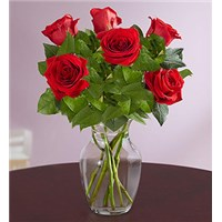 6-red-rose-arranged-vase